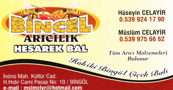 bincel-aricilik